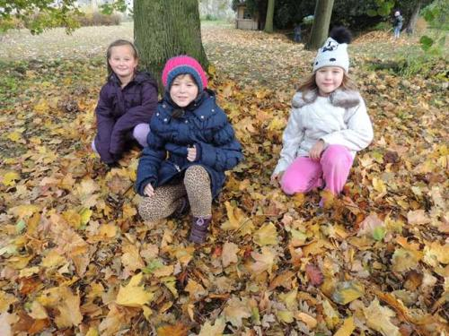 ŠD - Podzim na školní zahradě I