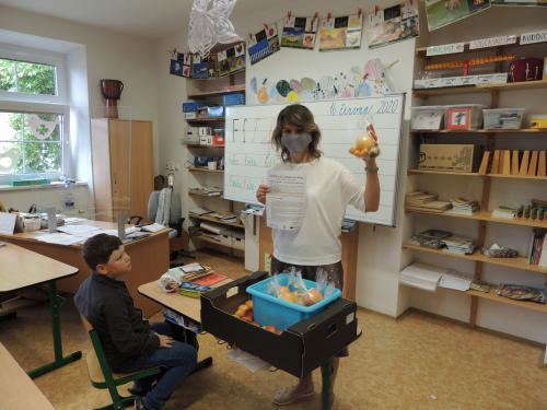 Projekt  Mléko a ovoce do škol